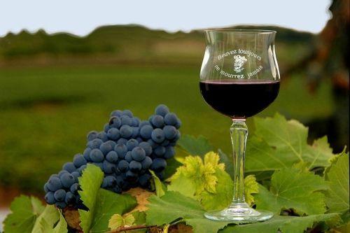 vin de touraine