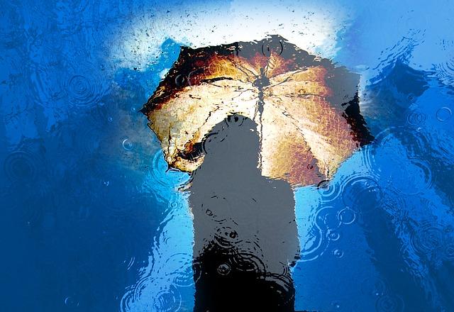 parapluie,pluie,femme,