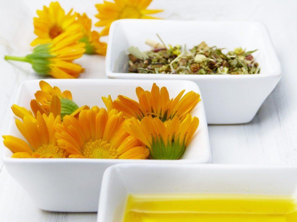 fleurs,jardin,recette,salade,dessert,cuisine,
